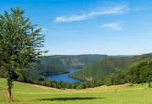 Mineralwasserquellen in der Eifel